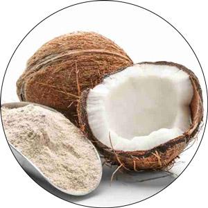 Keto, Paleo, Low Carb Coconut Flour Bread: Sugar-Free, Nut-Free, Gluten-Free