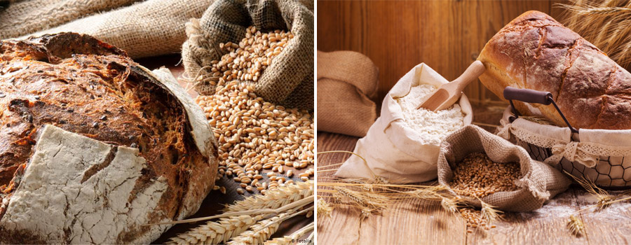 Excellent raw materials for flour