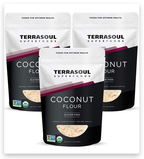 Terrasoul Superfoods Organic Coconut Flour